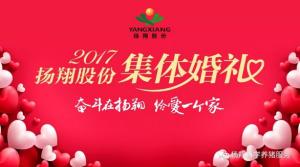 """""""奋斗在扬翔,给爱一个家""""――扬翔股份2017年集体婚礼今天举行啦~"""