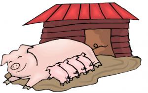 速看!猪场80%的效益都在这儿,养猪人你做对了吗?