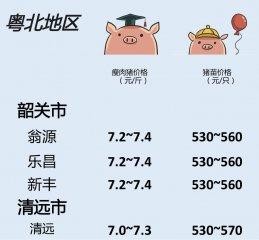 猪价 | 10月11日 广东生猪行情动态一览!