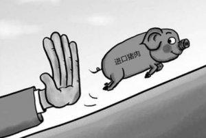 透过现象看本质:猪周期循环涨跌,未来养猪仍可盈利!