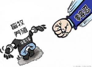 """龙岩市新罗区开展生猪养殖污染整治 """"百"""