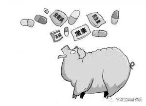 兽用激素别乱用,用错了会要猪的命!