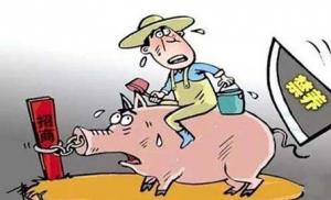 养殖场拆迁补偿太低不想签协议? 这四件事一定要记住