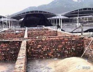获批猪场建到一半被拆除,还能好好养猪吗?