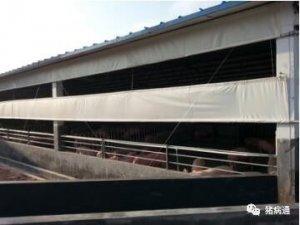 养猪场常用猪舍保温设备的选择及使用技巧