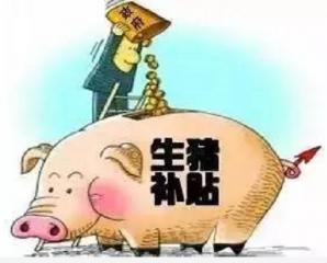 养猪补贴有哪些,你知道吗?