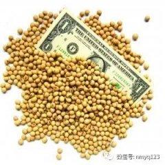 【看点】中美签署1200万吨美豆协议订单