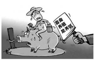 禁养倒计时,各省动作关系到明年的猪价