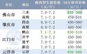 广东2017年11月20日猪