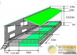 生态养猪猪舍设计建造