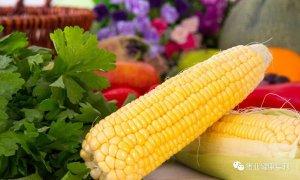 【饲料】玉米采购应该知道的事儿