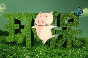 猪业环保,之前我们可能想错了?!