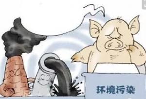 """环保部要求""""持证排污"""",养猪人准备好了吗?!!!"""