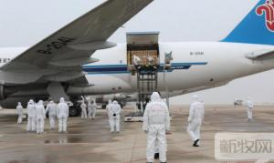 658头法国种猪搭豪华航班抵武汉