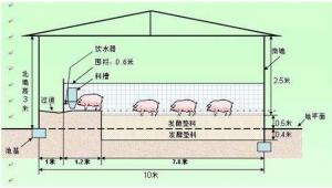 一举解决养猪废弃物的污染问题!高床养猪系统!