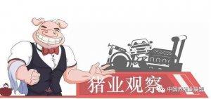猪价破8,不过是虚晃一枪,饲料、豆粕、