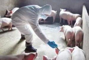 2017动保行业十大事件