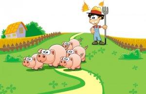 董广林:与其在拖延中痛苦,不如在速决中新生――最另类的农牧行业年终总结!
