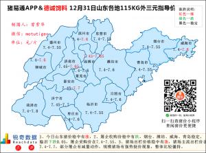 猪易通app12月31日山东猪价走势-稳中有涨