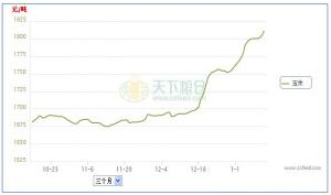 华北黄淮玉米价格会否冲击1元/斤?