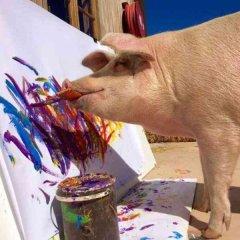 """400斤大肥猪被誉为""""猪加索"""",一幅画卖到近3万元"""