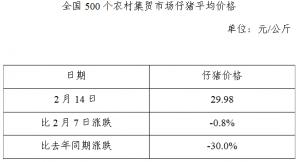 全国500个农村集贸市场仔猪平均价格(2月14日)