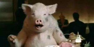 猪场老发病到底和什么有关?这篇文章说的很明白!