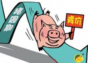 山东东阿生猪价格持续走低,同比下降27.03%
