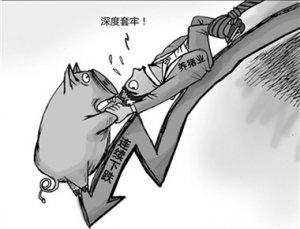 """山东临沭:生猪价格连续下跌 养殖户""""步步惊心"""""""