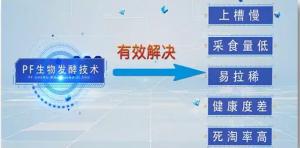 行业首创!双胞胎PF生物发酵料引领中国教保料发展新潮流