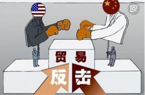 中美贸易战对进口大豆的影响分析