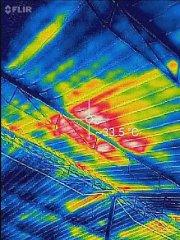 高岩|红外线成像设备在猪舍的应用