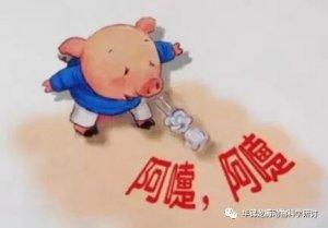 保育猪不好养?是你没注意这些