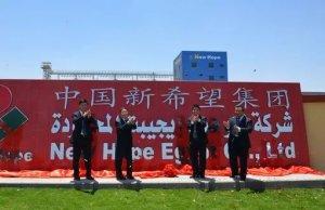 中国农牧企业在埃及,四年逆袭为行业第一品牌