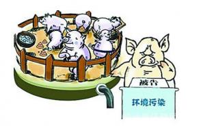 """珠田:四举措强化生猪养殖污染整治""""春季攻势""""行动"""