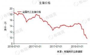 猪价涨跌盘整 近期趋稳