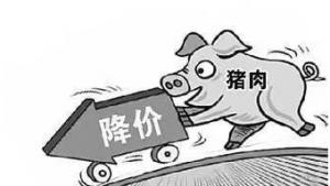 受生猪市场产能过剩影响 猪肉价格持续下跌