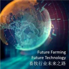 畜牧行业未来之路 ――中荷猪业研讨会