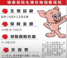 陕西省养殖户为生猪上保险 猪肉身价有保障