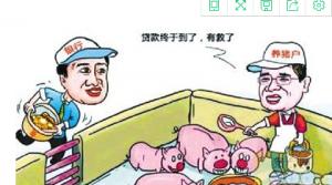 """生猪养殖""""资产收益"""" 有效带动贫困户增收"""