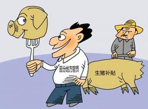 养猪补贴都给大猪场,散户怎么办?