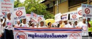 泰国养猪户集体抗议进口美国含瘦肉精猪肉!