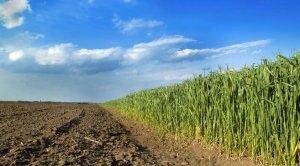 农业农村部、财政部发布2018年财政重点强农惠农政策