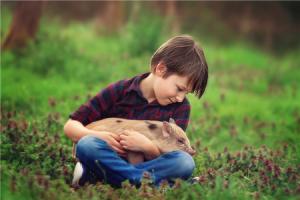 环保督察:一纸检察建议让养猪场投1700余万元改善排污设施