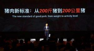 公里数判断猪肉品质?阿里云养猪新标准:从200斤到跑200公里的猪