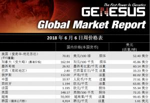 加裕全球市场报告-美国,2018年6月
