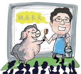 河北省猪粮比价重回绿色区域