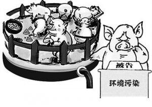 江西吉安环保信访,全部为养殖场排污