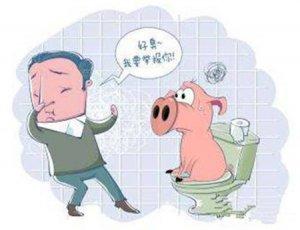 猪场该如何规避环保风险?