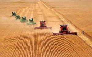 北大荒拟认购一家国际饲料生产公司51%股权